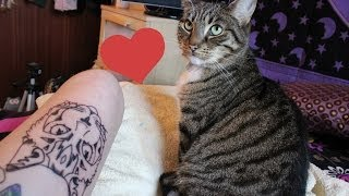 Tattooing Myself A Kitty