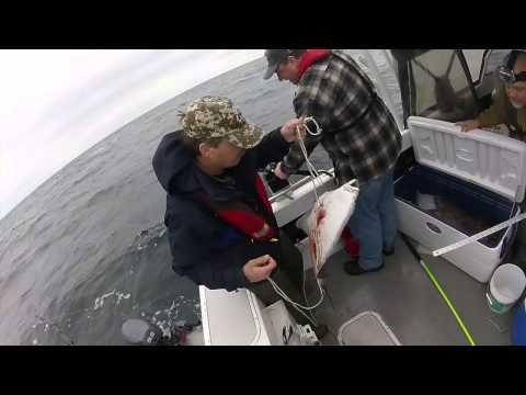 Halibut Of A Trip Fishing Off The Oregon Coast