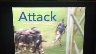 Vatemo Ravouvou Rugby highlights