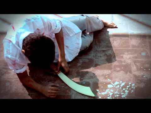 Beaconhouse School system -The Dying Gladiator.flv