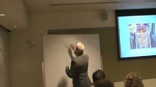 Seminar Enteric System Daniel Weber