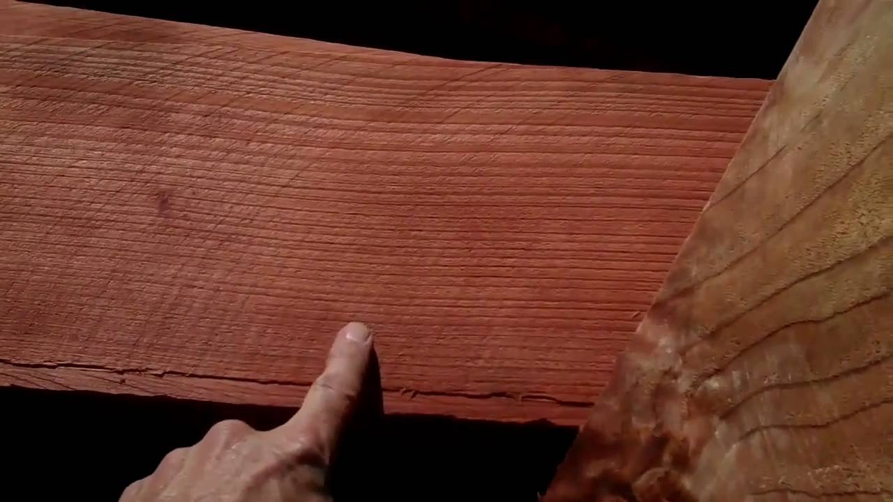 Redwood Vs Cedar >> 114 The Difference Between Redwoods Youtube