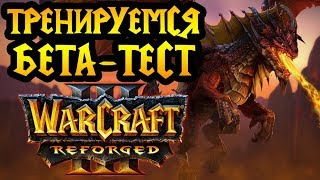 Бета-тест Warcraft 3 Reforged. Релиз в декабре