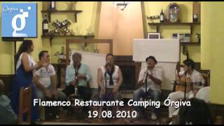 Flamenco Camping Orgiva 03. Orgiva, Alpujarra, Granada, Andalucia, España, Guadalinfo