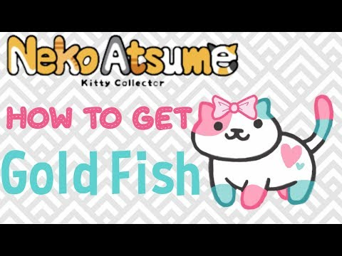 How To Get Gold Fish In Neko Atsume!!!! (FIXED VERSION)