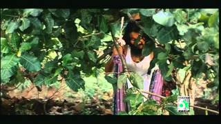 Aararo Aariraro Thagappan Samy Tamil Movie HD Video Song
