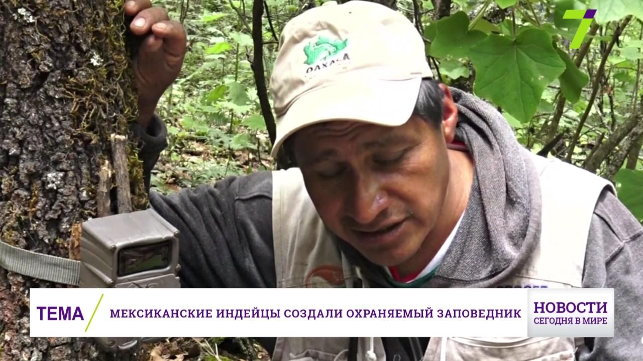 Вид новостей для кино сайтов на ucoz