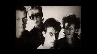Bauhaus - Sanity Assassin (Lyrics)