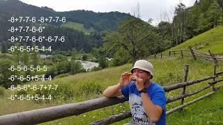 Гуцульский рифф для губной гармошки.Урок№16.Украинский лад