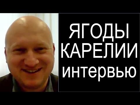 Интервью C Самохваловым Максимом Ягоды Карелии. Отзыв об АСУ 21 Век, АСУ XXI Век