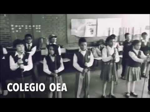 Selección Rítmica OEA Base Batucada They don't care about us SBJM