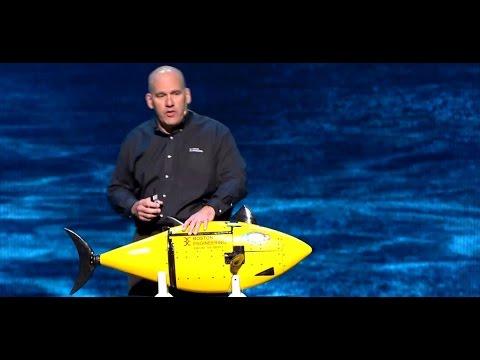 How Reverse Engineering Propels BIOSwimmer Robotics Innovation