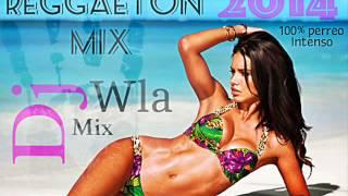 Reggaeton Mix 100% Perreo Intenso 2014 (Dj-Wlaa Miix)