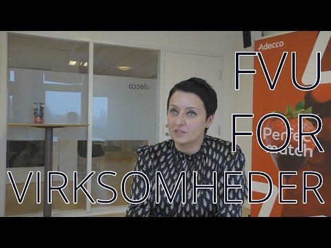 FVU for virksomheder