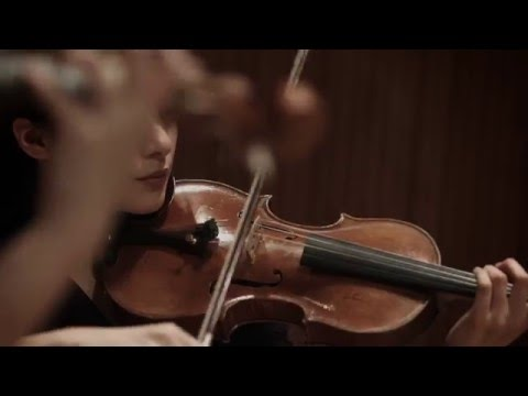 "Antonio Vivaldi ""The Four Seasons"" 「四季」 by The Quartet Four Seasons 4K Music-Video"
