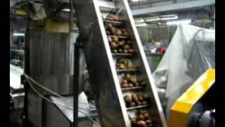 видео Оборудование для переработки овощей, плодов, грибов