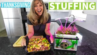 COOKING THANKSGIVING STUFFING WITH AQUAPONICS I Grow & Cook