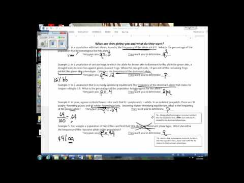 Unit 8 Lecture 2 - Hardy Weinberg