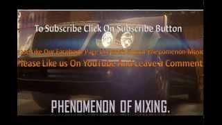 Pani Da Rang Remix By DivyanshPhenomenon2015