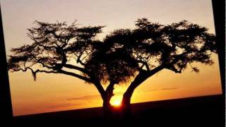 Soul of Africa.wmv