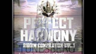 Miss Tati - If You Feel (Perfect Harmony Riddim) Partillo Prod (Tunesberg Records)