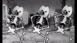 spooky-scary-skeledogs