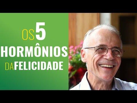OS CINCO HORMÔNIOS DA FELICIDADE
