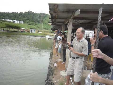 Kolam Pancing Damansara Perdana