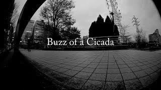 Buzz of a Cicada - BURDEN 2017 thumbnail