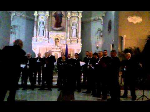 Dalmatino povišću pritrujena - Gradski zbor Brodosplit