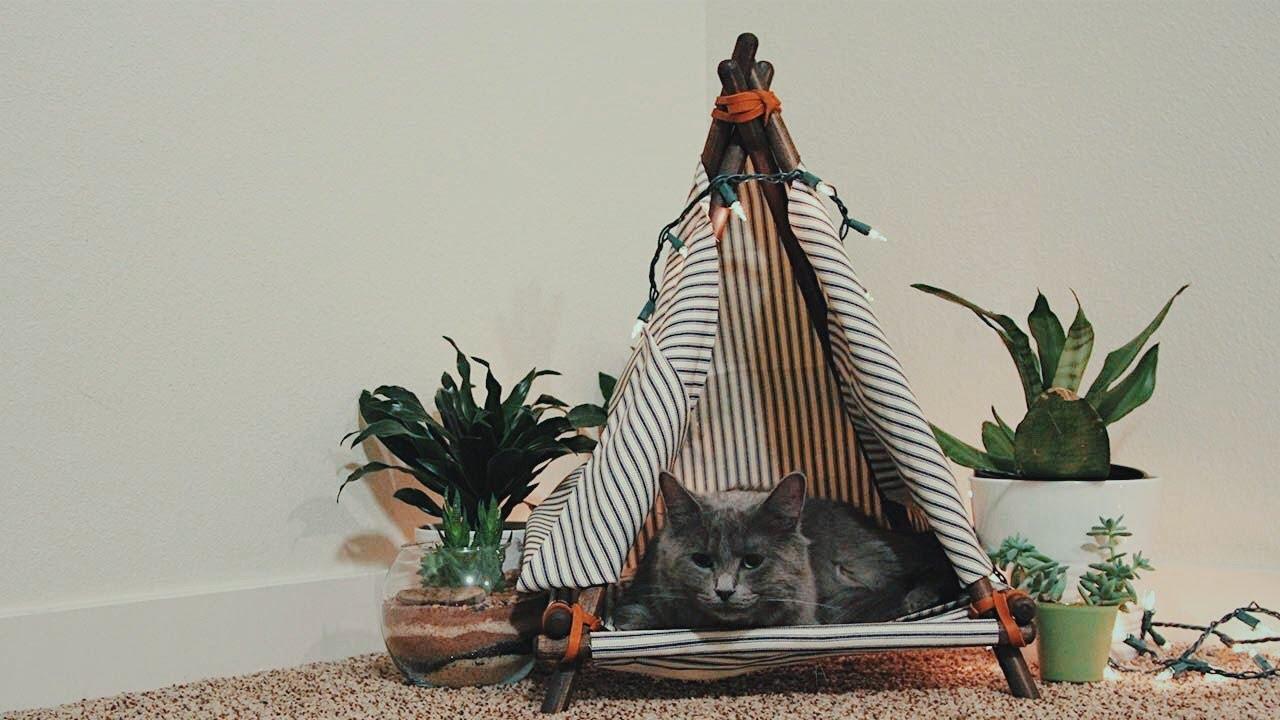 Download Build A DIY Cat Bed