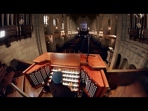 Matt Leonard -  Pipe Organ (An instrument the size of a building)