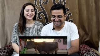 Pakistani React to Shada | Diljit Dosanjh | Trailer | Neeru Bajwa | Shada Diljit |