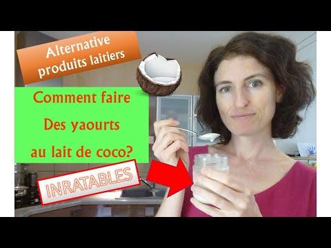 comment-faire-des-yaourts-au-lait-de-coco-maison?