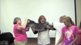 Самая длинная в мире домашняя кошка