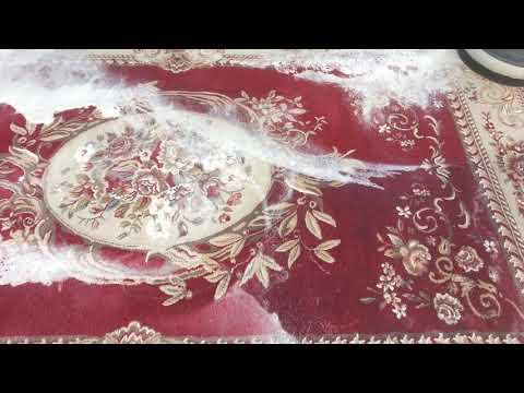ASMR Carpet Washing