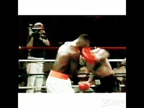 Mike tyson knockout gif