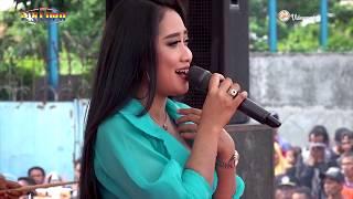 NEW PALLAPA Gerimis Melanda Hati - Anisa Rahma Live Muarareja Tegal
