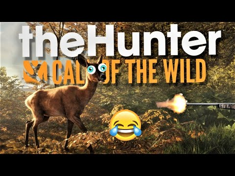 Two Idiots Go Hunting, What's The Worst That Could Happen? Funny Stuff With Jester Co-Op