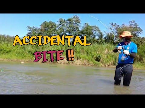 Fishing Tilapia: Gamit Kong Pamain Ay Lumot/ Magandang Pamain Sa Tilapia/ (2020)