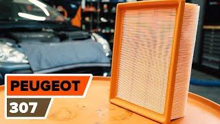 Kā nomainīt PEUGEOT 307 Motora gaisa filtrs [PAMĀCĪBA]