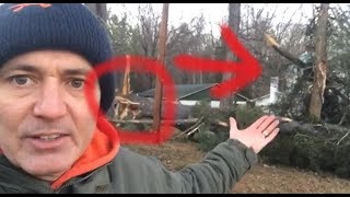 Bigfoot Sasquatch Threw A Tree At My House And Got My Chickens In Latest Attacks