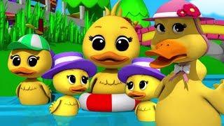 Download Lima Bebek Kecil | sajak pembibitan | lagu anak anak | Preschool Songs | Five Little Ducks