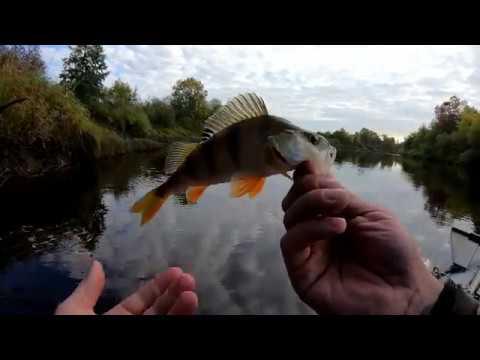 Двухдневная рыбалка на реке Пижма. День первый.