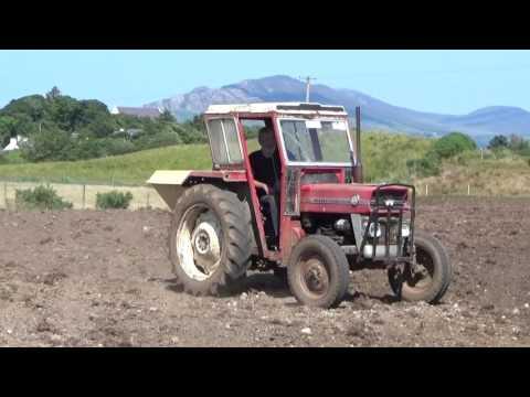 Eamon Coyle Reclaiming Boglands