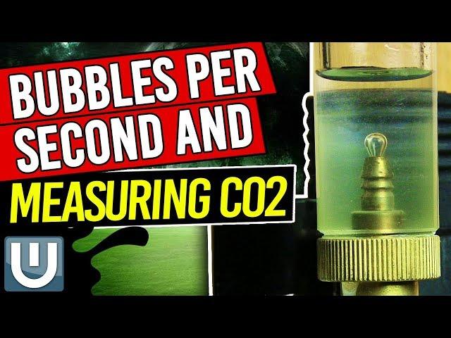 Bubbles per Second - Aquarium Co2  and Measuring Levels