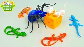 Интерактивный ПАУК охотится на мышей и ящериц - Обзоры Игрушек с Даником. Interactive toy spider