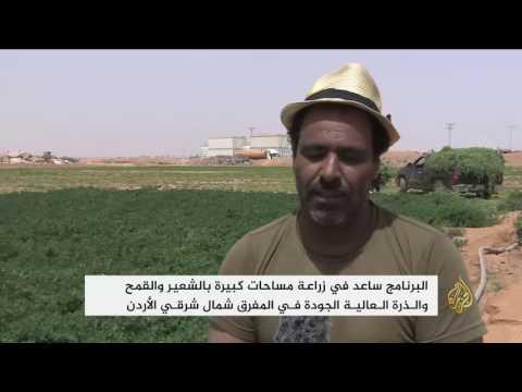استخدام المياه المعالجة في الزراعة بمخيم الزعتري  - نشر قبل 8 ساعة