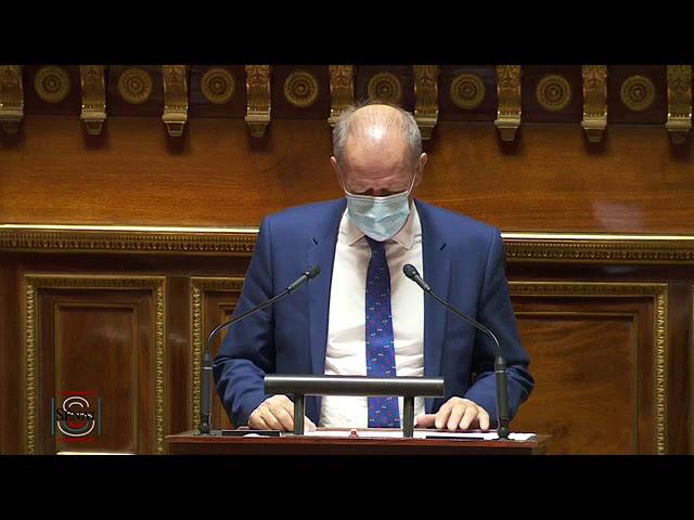 Dany WATTEBLED : PJL relatif au Conseil Economique, social et environnemental