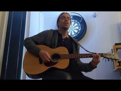 Chris T-T - Gulls (Cover)